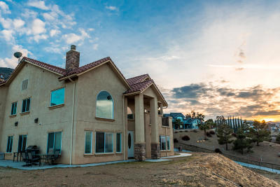 Lancaster, Palmdale Single Family Home For Sale: 1014 Lake View Drive