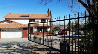 Palmdale Single Family Home For Sale: 603 W Barrel Springs Rd