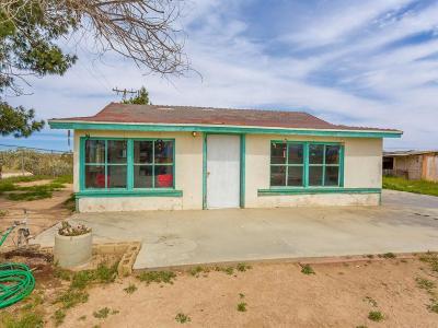 Lancaster Single Family Home For Sale: 19703 E Ave G