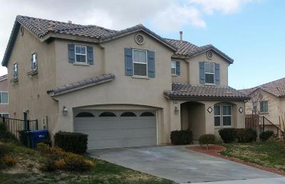 Palmdale Single Family Home For Sale: 38659 Panther Drive