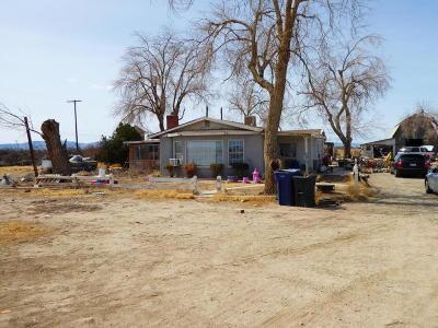 Lancaster Single Family Home For Sale: 46415 E 60th Street