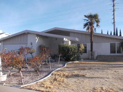 Lancaster Single Family Home For Sale: 2084 W Spice Street