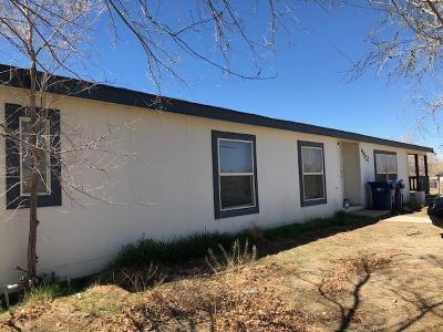 Lancaster Single Family Home For Sale: 40627 161st Street
