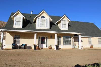 Leona Valley Single Family Home For Sale: 9149 Elizabeth Lake Road