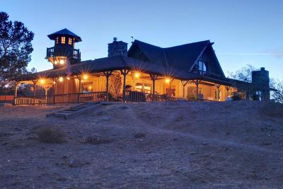 Acton, Canyon Country, Castaic, Saugus, Newhall, Santa Clarita, Stevenson Ranch, Valencia, Agua Dulce Single Family Home For Sale: 4466 Escondido Canyon Road