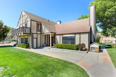 Acton, Canyon Country, Castaic, Newhall, Saugus, Santa Clarita, Stevenson Ranch, Valencia, Agua Dulce Single Family Home For Sale: 32145 42nd Street