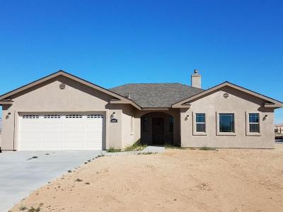 California City Single Family Home For Sale: 9245 Fucshia Avenue