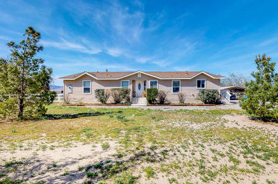 Lancaster Single Family Home For Sale: 28221 Benjie Way
