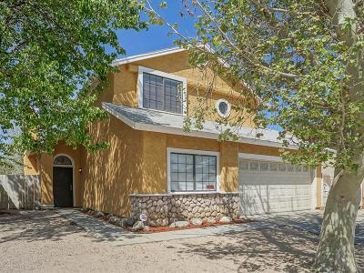 Lancaster Single Family Home For Sale: 611 E Jenner Street