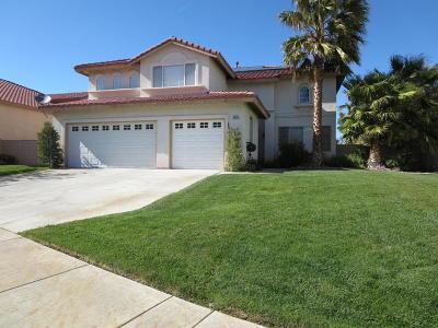 Lancaster Single Family Home For Sale: 6535 Smoketree Circle