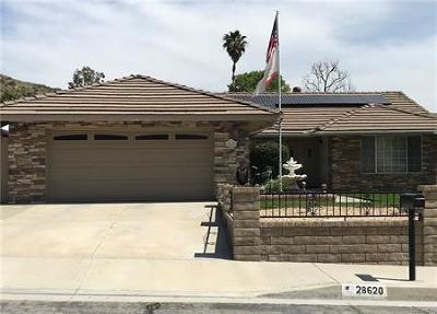 Santa Clarita Single Family Home For Sale: 28620 Kathleen Avenue