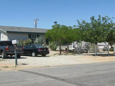 California City Single Family Home For Sale: 8925 Oleander Av. Avenue