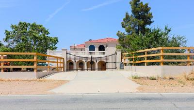 Acton, Canyon Country, Castaic, Saugus, Newhall, Santa Clarita, Stevenson Ranch, Valencia, Agua Dulce Single Family Home For Sale: 10535 Escondido Canyon Road