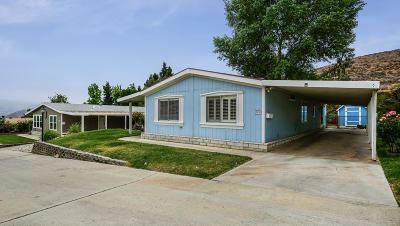 Acton Single Family Home For Sale: 33105 Santiago Road #Spc 75