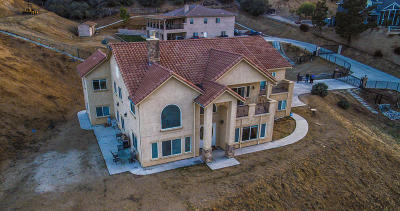 Palmdale Single Family Home For Sale: 1014 Lakeview Drive