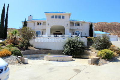 Palmdale Single Family Home For Sale: 238 Lakeview Drive