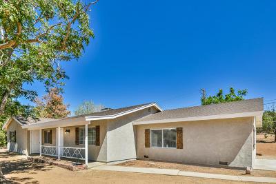 Acton, Canyon Country, Castaic, Saugus, Newhall, Santa Clarita, Stevenson Ranch, Valencia, Agua Dulce Single Family Home For Sale: 2880 Sacramento Avenue