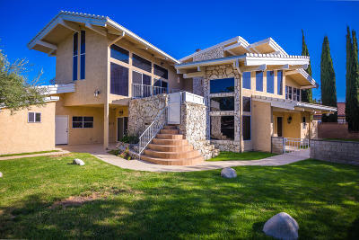 Palmdale Single Family Home For Sale: 39830 Golfers Drive