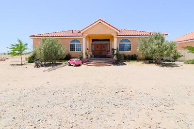 Lancaster, Palmdale Single Family Home For Sale: 23120 W Avenue C