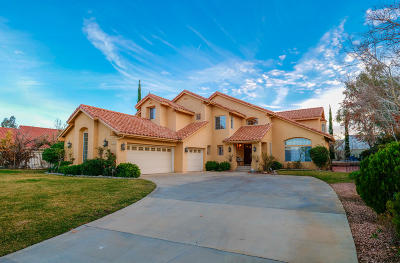 Palmdale Single Family Home For Sale: 5644 Avenida Classica