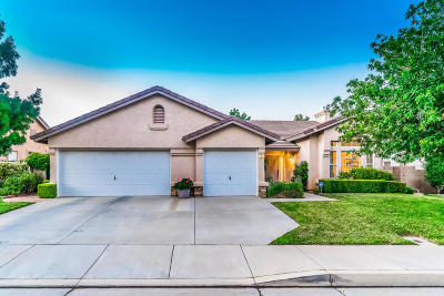 Single Family Home For Sale: 4157 Cocina Lane