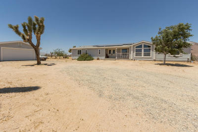 Mojave Single Family Home For Sale: 4403 Backus Road