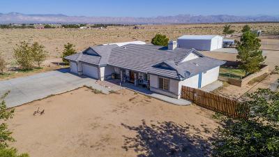 California City Single Family Home For Sale: 7675 Poppy Boulevard