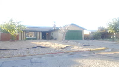 California City Single Family Home For Sale: 21469 Applewood Drive