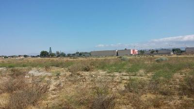 Los Angeles County Residential Lots & Land For Sale: Avenue K 12 Vic 30 Street