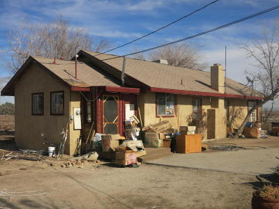Lancaster Single Family Home For Sale: 4466 E Lancaster Boulevard