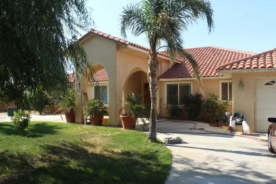 Littlerock Single Family Home For Sale: 10045 E Avenue R Avenue