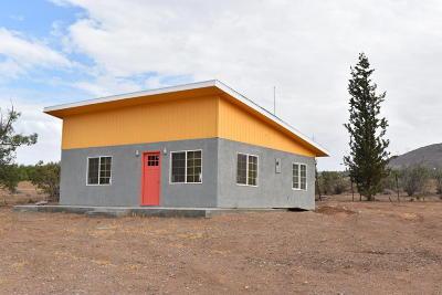 Acton, Canyon Country, Castaic, Saugus, Newhall, Santa Clarita, Stevenson Ranch, Valencia, Agua Dulce Single Family Home For Sale: 33801 McEnnery Canyon Road