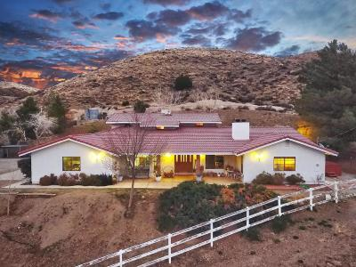Leona Valley Single Family Home For Sale: 6600 Godde Hill Road