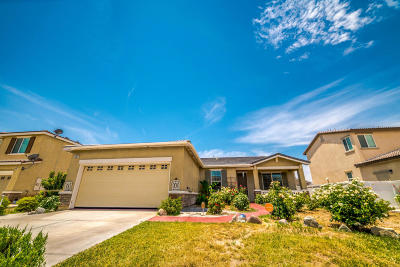 Lancaster Single Family Home For Sale: 44953 Shad Street
