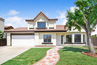 Palmdale Single Family Home For Sale: 37704 53rd Street