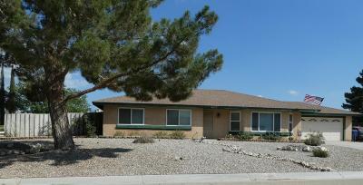 Littlerock Single Family Home For Sale: 9670 E Avenue R12