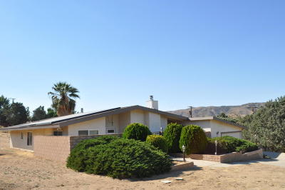 Leona Valley Single Family Home For Sale: 39753 W 87th Street