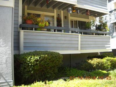 Santa Clarita Condo/Townhouse For Sale: 20342 Fanchon Lane #Unit 127