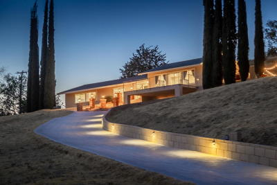 Leona Valley Single Family Home For Sale: 8269 Elizabeth Lake Road