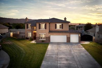 Lancaster Single Family Home For Sale: 41619 Firenze St
