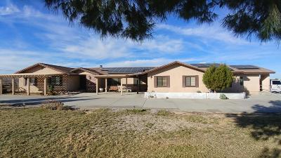 Lancaster, Palmdale Single Family Home For Sale: 1539 W Ave L12