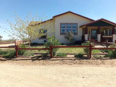Littlerock Single Family Home For Sale: 10838 E Ave W