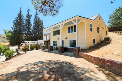 Leona Valley Single Family Home For Sale: 40003 92nd Street #92