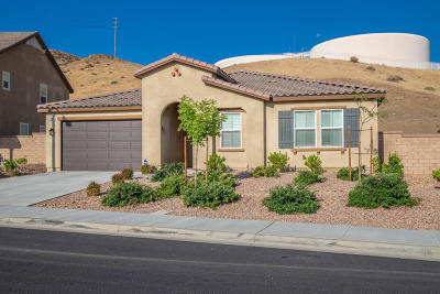 Palmdale Single Family Home For Sale: 37314 Paintbrush Drive