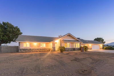 Palmdale Single Family Home For Sale: 4070 W N3