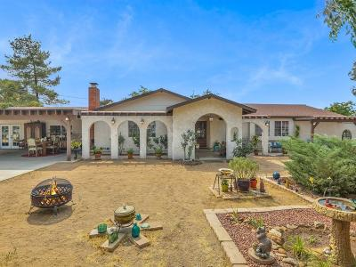 Palmdale Single Family Home For Sale: 41661 W 25th Street
