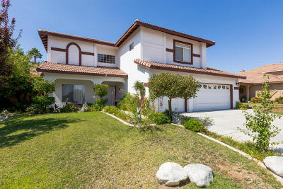 Palmdale Single Family Home For Sale: 4040 Grandview Drive