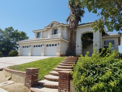 Lancaster Single Family Home For Sale: 7357 Round Hill Drive Drive