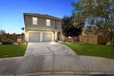 Lancaster Single Family Home For Sale: 43023 Bale Court