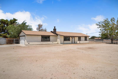 Single Family Home For Sale: 10153 E Avenue R4